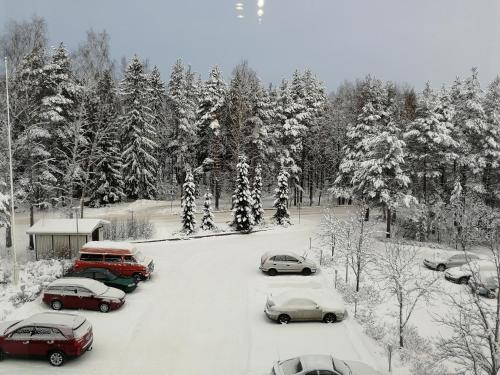 Scandinavian Sun Apartments talvella