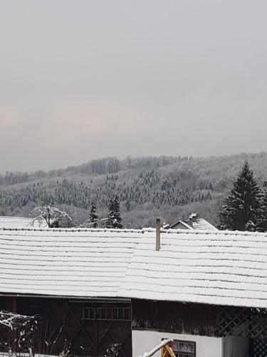 Objekt Apartman Jozefina zimi