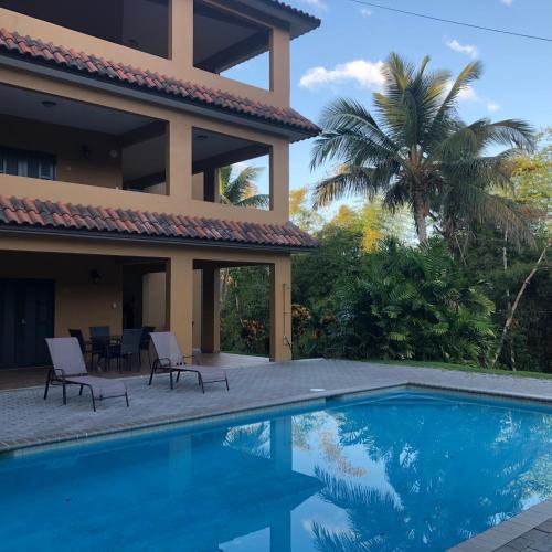 The swimming pool at or near Las Palmas Inn