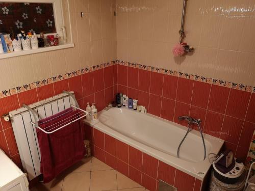 Kúpeľňa v ubytovaní Studio apartman Nina