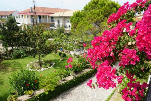A garden outside Arillas Studios