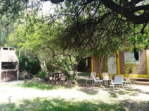 Un jardín fuera de Menta limon