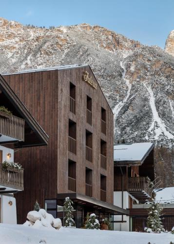 Faloria Mountain Spa Resort during the winter