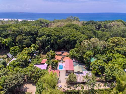 A bird's-eye view of Tropical Beach