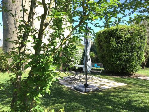 Jardin de l'établissement Le Moulin de Margaux