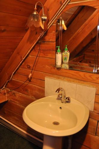 A bathroom at Lesnoy Cottage