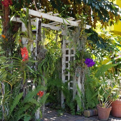 هتل Orchid Cottage