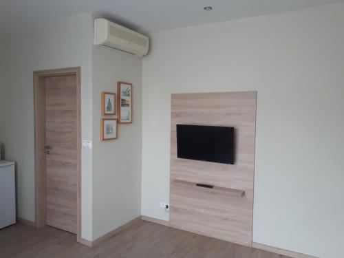 A television and/or entertainment center at Apartments Lafranconi