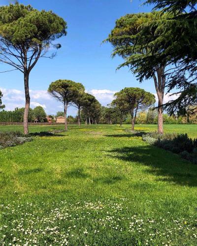 Foresteria Di Villa Tiepolo Passi