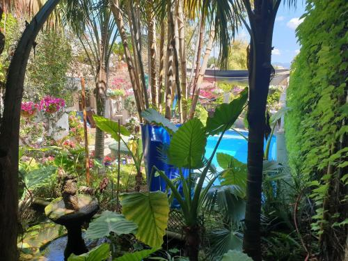A view of the pool at The Green House - Adults Only or nearby
