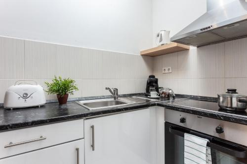 A kitchen or kitchenette at Maple Tree Budget Apartments