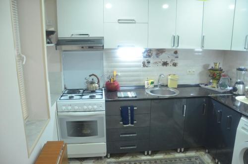 Küche/Küchenzeile in der Unterkunft Apartment Kutaisi L&l
