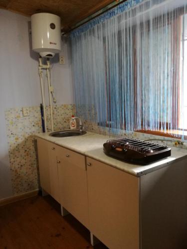 A kitchen or kitchenette at Guest house Baza otdyha Vodnik