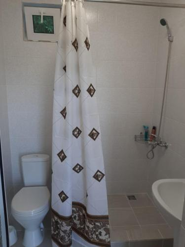 A bathroom at Guest house berendei2000