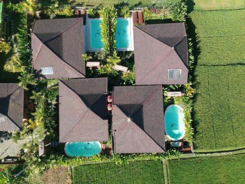 A bird's-eye view of Candy Villa