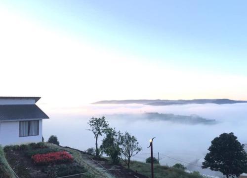 Cloudy Garden - Vườn Mây Dalat