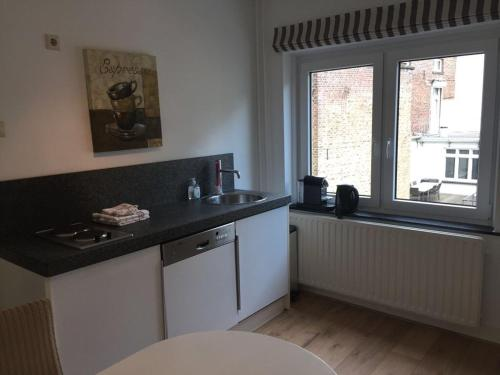 A kitchen or kitchenette at Beau City Apartment Maastricht