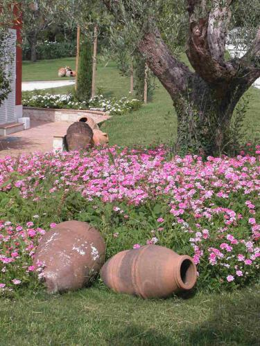 Borgo Rosso Country House B&B