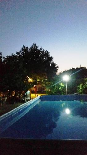 The swimming pool at or near Alexandra Homestay