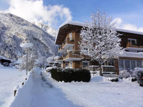 Apart Hotel Therese im Winter