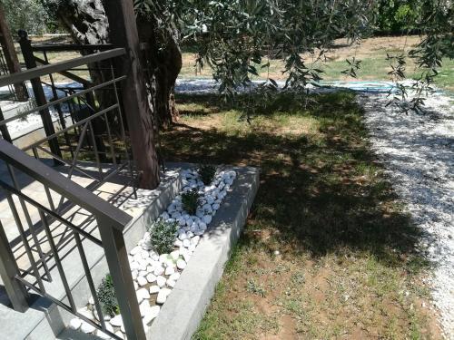 A garden outside Lucia's Home