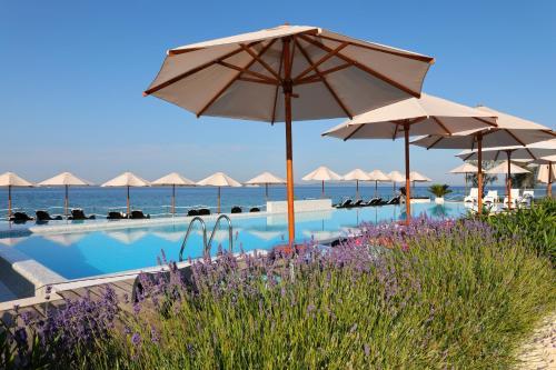 Der Swimmingpool an oder in der Nähe von Sunnyside Apartments Petrcane