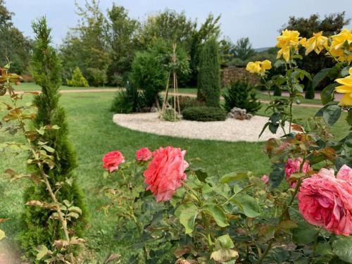 Сад в ЖК Green Park