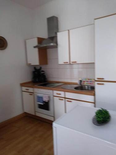A kitchen or kitchenette at Ferienwohnungen Wilhelm