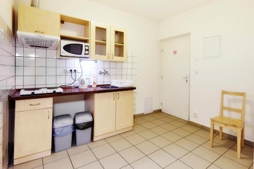 A kitchen or kitchenette at Apartmány Ubytování Alfa