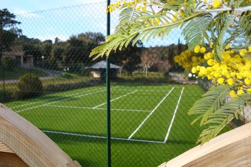 Tennis and/or squash facilities at Le domaine de Villepey or nearby