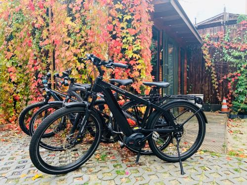 Biking at or in the surroundings of Mała Anglia - Boutique Apartments & SPA