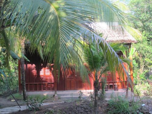 Xóm Dừa Nước