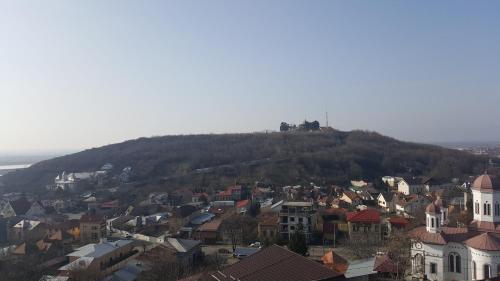 Vedere de sus a Vila Ada