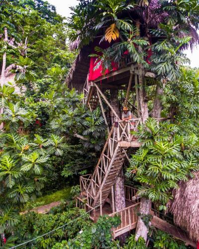 Resort Dominican Tree House El Valle Dominican Republic