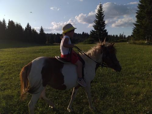 Équitation au sein de la maison de vacances ou à proximité