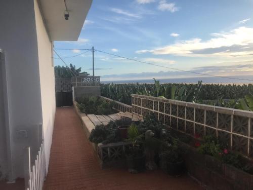 Ein Balkon oder eine Terrasse in der Unterkunft apartamento Finca La Chiquita