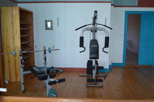 Het fitnesscentrum en/of fitnessfaciliteiten van Luxe vakantiehuis Värmland, Zweden