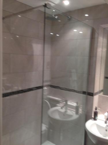 A bathroom at Dashwood Apartments