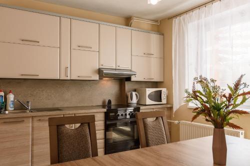 Kuchyň nebo kuchyňský kout v ubytování Apartman Elegant
