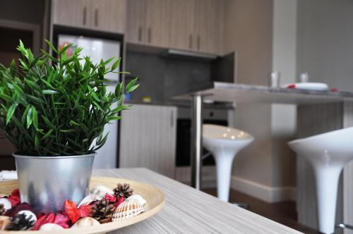 Η κουζίνα ή μικρή κουζίνα στο Penthouse Apartments, The Luxury Suites
