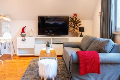 TV a/nebo společenská místnost v ubytování Gabi Apartament Zakopane
