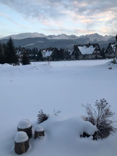 Willa Szafran - apartamenty v zimě