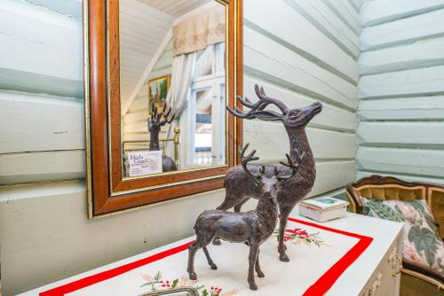 Kjæledyr som tilhører gjester på Hesla Farm Apartments