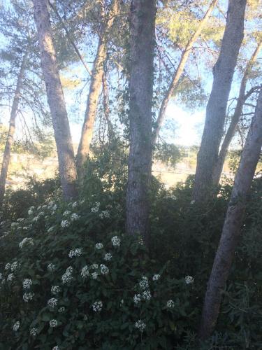 Kyriad Montpellier Nord Parc Euromédecine