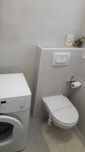 Un baño de Apartment Iva