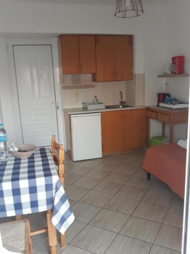 A kitchen or kitchenette at Katerina & Efi Apartments