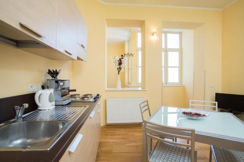 A kitchen or kitchenette at Vlkova Palace
