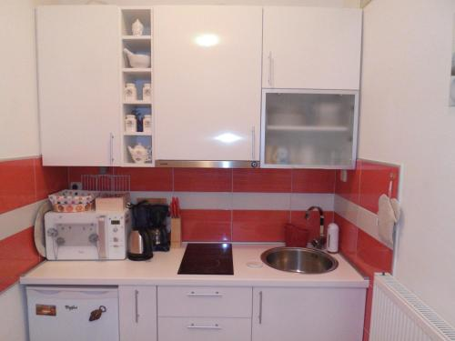 Kuhinja ili čajna kuhinja u objektu Alma's 34 Studio Apartment