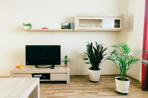 A television and/or entertainment centre at Riga Street Apartments in Valmiera - 20