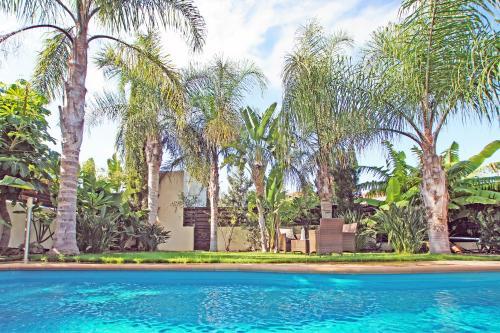 The swimming pool at or near Villa Velma